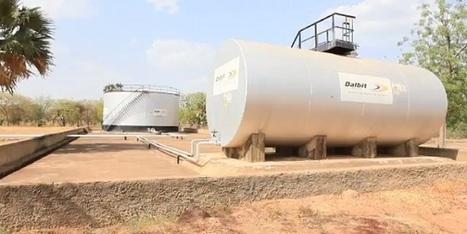 Dalbit International : Africa Business Directory   Energy in Africa   Scoop.it