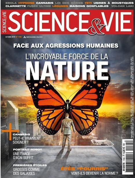 Science & Vie | N°1165 | Octobre 2014 | Revue des unes et des sommaires des abonnements du CDI | Scoop.it