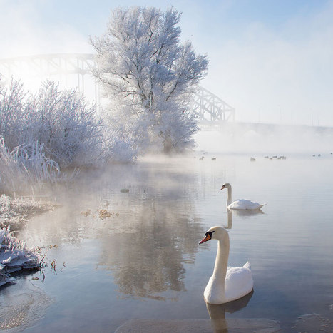 20 Breathtaking Photos Of Winter Landscapes | Reflejos | Scoop.it