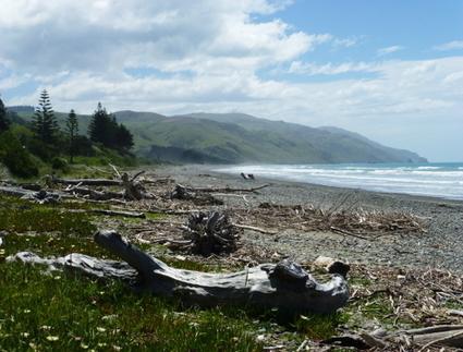 Gore Bay › Weit weg Reisen   Newzealand   Scoop.it