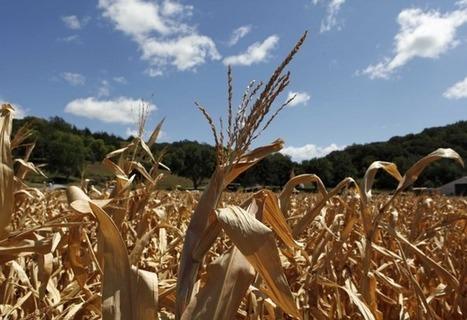 Le Sud-Ouest, leader dans l'innovation agricole et agroalimentaire - Objectif Aquitaine | De la Fourche à la Fourchette (Agriculture Agroalimentaire) | Scoop.it