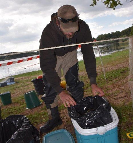 TORCY : Il y a trop de poissons chats dans le Lac   water news   Scoop.it