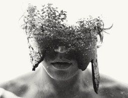 Christopher Relander | We Are Nature Project | Vol. III | MUSÉO, ARTS ET SPECTACLES | Scoop.it