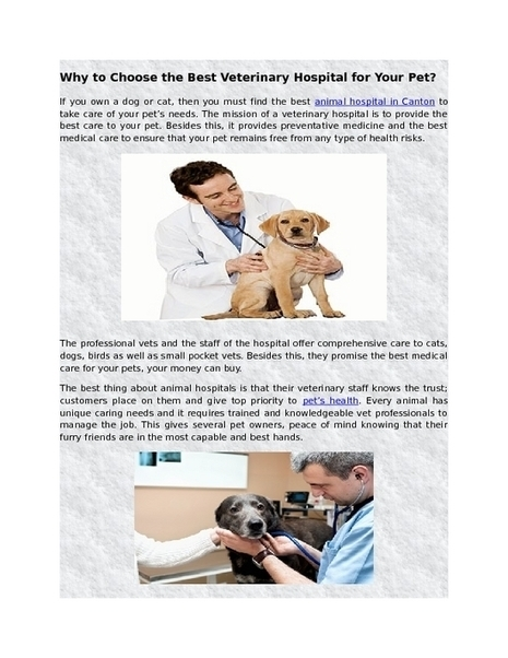 Top Reasons to Choose the Best Veterinary Hospital for Your Pet | Veterinarian Hospital | Scoop.it