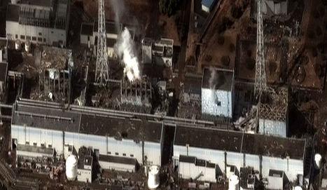 Conférence-Débat : Le Japon va-t-il revenir au nucléaire? - Japon Infos | démocratie énergetique | Scoop.it