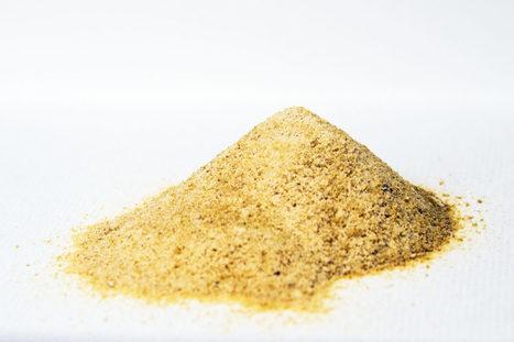 A Magical Mushroom Powder Blocks Bitterness in Food | Popular Science | Scoop.it