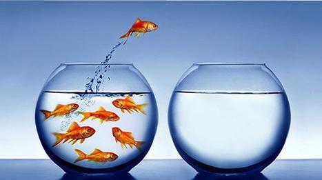 Life coaching via smartphone, cambia la tua vita in un'app - Wired.it | Self Coaching | Scoop.it