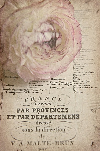 French Larkspur: Flowers and vintage paper love... | Vintage Whatever | Scoop.it
