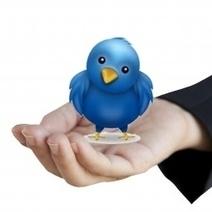 Twitter - Emploi : un nouvel espace de recrutement ? | Outils et ressources pour optimiser sa recherche d'emploi | Scoop.it