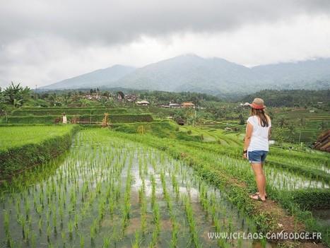 Mon itinéraire de 4 semaines en Indonésie | Voyages | Scoop.it
