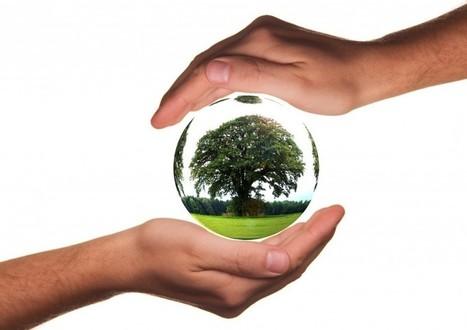 Comment rouler de manière économique et écologique ? - Le guide de l'assurance temporaire | Assurance temporaire auto | Scoop.it
