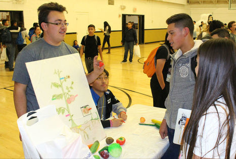 DHS students promote healthy living | CALS in the News | Scoop.it