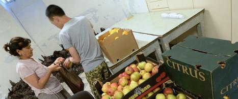 Contre la faim et la soif, il faut une loi contre le gaspillage alimentaire! | Economie Responsable et Consommation Collaborative | Scoop.it