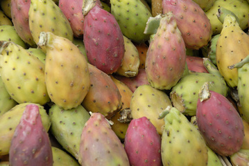 Prickly Pear Health Benefits | Global Insights | Scoop.it