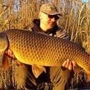 Boiliesuri, locuri si strategii de nadire la crap in Delta Dunarii | Crap24 | Carp fishing | Scoop.it