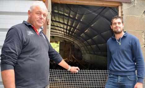 Grippe aviaire : les éleveurs périgourdins face aux mesures de bio sécurité | Agriculture en Dordogne | Scoop.it