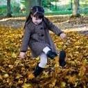 Activités à découvrir en forêt ou au jardin en Novembre   Les bambins au jardin   Scoop.it