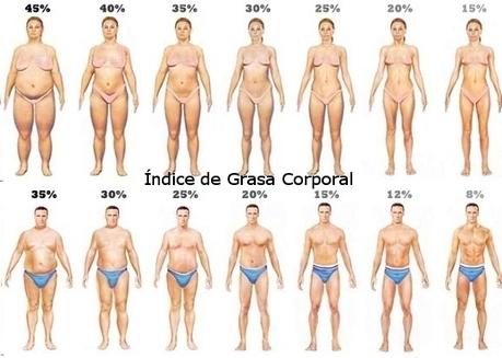 El Índice de Grasa Corporal | Educación Física-Prof. Facundo | Scoop.it