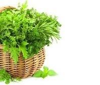 Eatwell - תזונה נכונה | תזונה | מתכוני בריאות | תוספי תזונה | בישול בריא | תזונה בריאה | איטוול | דיאטה ותזונה | Scoop.it