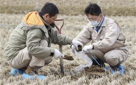 [Eng] De nouveaux hotspots invitent le Japon à étendre la surveillance | Telegraph | Japon : séisme, tsunami & conséquences | Scoop.it