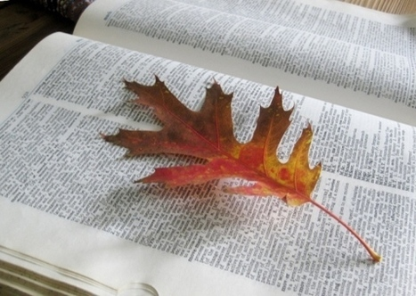 How to preserve Autumn's beautiful leaves | Total BodySmarts | Scoop.it