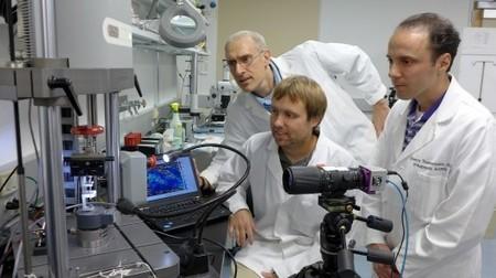 New algorithm identifies weak spots in body tissue prior to injury | TeKeeG | Scoop.it