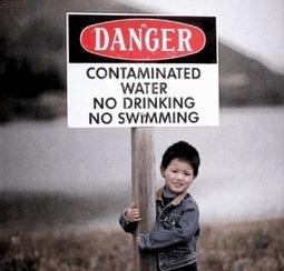 Les pesticides qui font grossir? | Toxique, soyons vigilant ! | Scoop.it