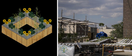 Urban Craziness: How About a Hydroponic Floating Garden in the ...   Vertical Farm - Food Factory   Scoop.it