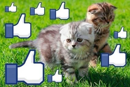 Descubren la fórmula de los Likes en Facebook | Clipset | Web-Social | Scoop.it