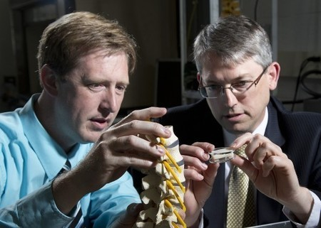 Artificial spinal disc designed to treat chronic lower back pain | Longevity science | Scoop.it