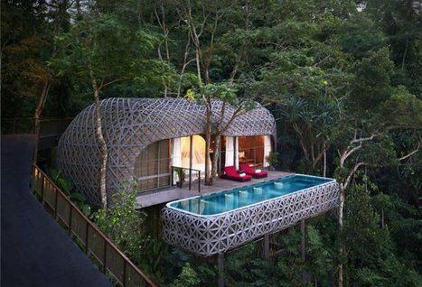 Keemala un hôtel dans les arbres à Phuket en Thaïlande   Arkko   Scoop.it