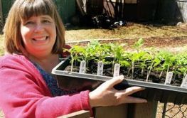 NS: Taking eat local one step further | Vertical Farm - Food Factory | Scoop.it