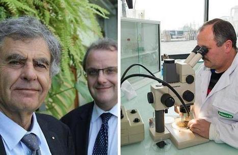 Pays de la Loire. Végépolys invite le consommateur dans son labo   Chimie verte et agroécologie   Scoop.it