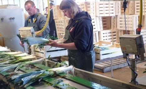 Malgré de nombreux postes, le secteur de l'alimentaire peine à recruter - Tendance Ouest | Emplois en Normandie | Scoop.it