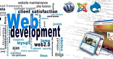 The Effective Role of Web Design and Development Services | Software Services India | Scoop.it