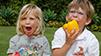 Los Angeles Organic Produce Deliver | farmboxla1 | Scoop.it