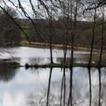 Les étangs piscicoles à barrage éliminent les pesticides | 3A : Actualités Aquacoles & Aquaponiques | Scoop.it