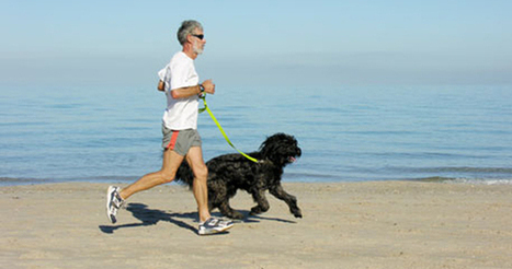 Exercising With Your Dog | Physical Fitness | Scoop.it