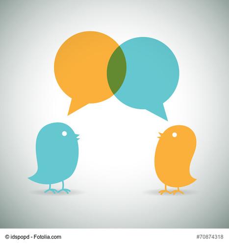 Come avere successo su Twitter: 7 regole da seguire per costruire un profilo efficace | Web Content Enjoyneering | Scoop.it