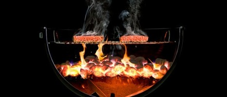 «Cookbook to end all cookbooks» – Modernist Cuisine - l'analytique de l'aliment - Le beau, le bon   Food Culture   Scoop.it