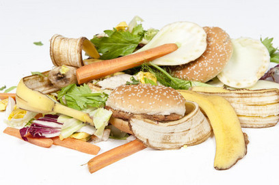Banning food waste to landfill 'a political no-brainer' | Food Waste As Such | Scoop.it