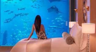 Interview with Serge Zaalof, President & General Manager of Atlantis the Palm | RichDubai | Scoop.it