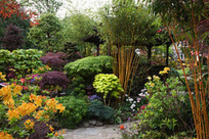 Smart gardening apps for your smartphone | Garden apps for mobile devices | Scoop.it