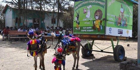 Etiopia, la storia della biblioteca mobile trainata dagli asinelli   ETHIOPIA   Scoop.it