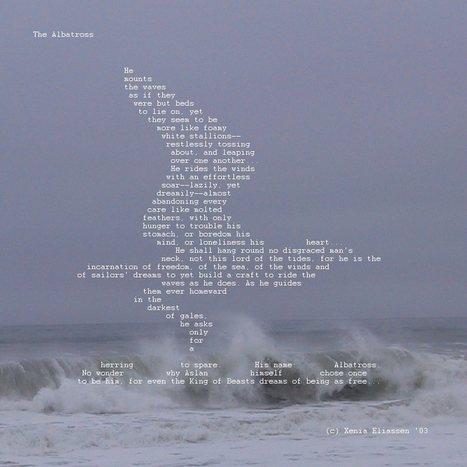 The Albatross | ASCII Art | Scoop.it