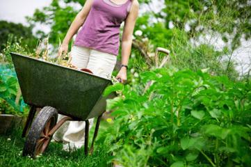 Prêt de jardin entre particuliers - Mise en relation entre des propriétaires de jardins et des amateurs de jardinage | pretersonjardin.com | whynotblogue | Scoop.it