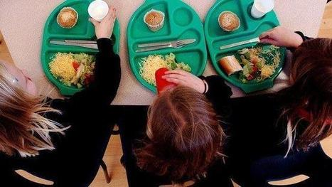 Free school outcome 'disappointing' | ESRC press coverage | Scoop.it