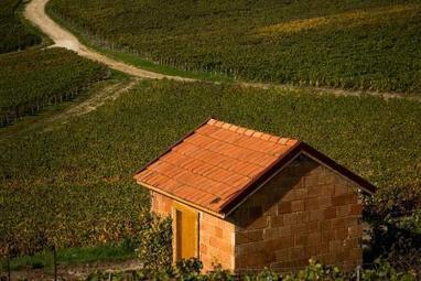 Des loges de vigne très tendance créées à Châlons-en-Champagne. | Verres de Contact | Scoop.it
