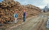 Plum Creek embraces mixed-use forestry in its 865,000 acres of North Woods   Timberland Investment   Scoop.it