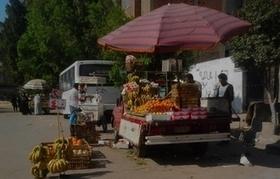 Egypt seeks to reduce food gap | Égypt-actus | Scoop.it